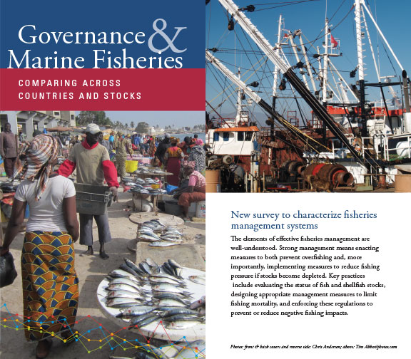 Fisheries Governance Survey