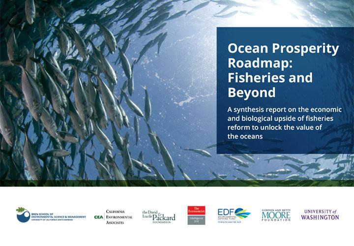 Ocean Prosperity Roadmap Synthesis